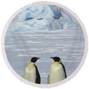 Emperor Penguins Round Beach Towel