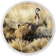 Emu Chicks Round Beach Towel