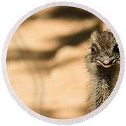 Emu Portrait Round Beach Towel