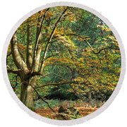 Enchanted Forest Tree Round Beach Towel