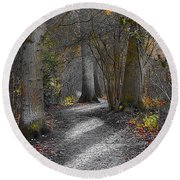 Enchanted Woods Round Beach Towel by Linsey Williams