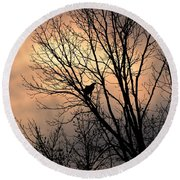 End Of The Day  Red Tailed Hawk Round Beach Towel