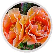 Engelmann Prickly Pear Cactus Flowers In Big Bend National Park-texas Round Beach Towel