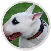 English Bull Terrier Round Beach Towel