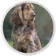 English Cocker Spaniel Dog Round Beach Towel