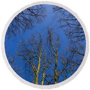 English Forest Trees Round Beach Towel