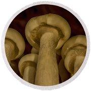Enokitake Mushrooms  Round Beach Towel