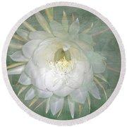 Epiphyllum Oxypetallum - Queen Of The Night Cactus Round Beach Towel