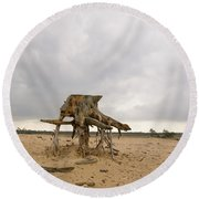Eroded Tree Stumps Stand On Their Roots Round Beach Towel