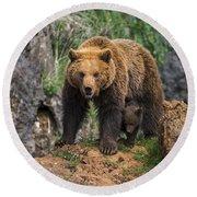 Eurasian Brown Bear 14 Round Beach Towel
