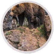 Eurasian Brown Bear 15 Round Beach Towel