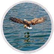 European Flying Sea Eagle 6 Round Beach Towel