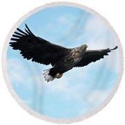 European Flying Sea Eagle 7 Round Beach Towel