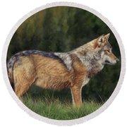 European Grey Wolf Round Beach Towel