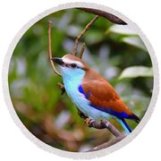 European Roller Round Beach Towel