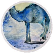 Even Camels Get The Blues Round Beach Towel