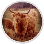 Even Cape Breton Cattle Have Character Round Beach Towel