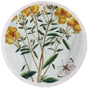 Evening Primrose Round Beach Towel