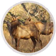 Evening Sets On The Elk Round Beach Towel