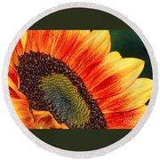 Evening Sun Sunflower Round Beach Towel