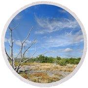 Everglades Coastal Prairies Round Beach Towel