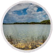 Everglades Lake 6930 Round Beach Towel by Rudy Umans