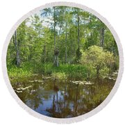 Everglades Lake Round Beach Towel