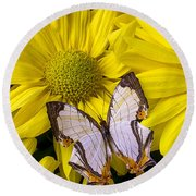 Exotic Butterfly Round Beach Towel