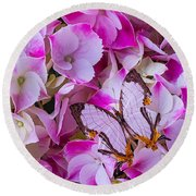 Exotic Butterfly On Hydrangea Round Beach Towel