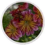 Exotic Spring Flowers Round Beach Towel