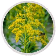 Exploring Goldenrod 3 Round Beach Towel