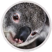 Eye Am Watching You - Koala Round Beach Towel