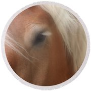 Eye Of A Belgian Horse Round Beach Towel