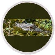 Eye Of The Alligator Round Beach Towel