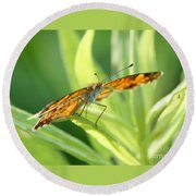 Eye Of The Butterfly Round Beach Towel