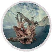 Eye Of The Driftwood Round Beach Towel