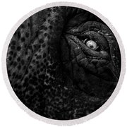 Eye Of The Elephant Round Beach Towel by Bob Orsillo