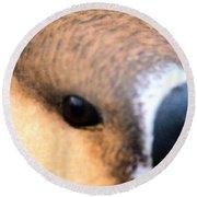 Eye Of The Gander Round Beach Towel