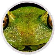 Eye-ringed Bushfrog Round Beach Towel