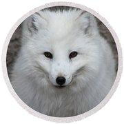 Eyes Of The Arctic Fox Round Beach Towel