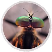 Eyes Of The Robber Fly Round Beach Towel