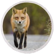 Face To Face Round Beach Towel