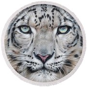 Faces Of The Wild - Snow Leopard Round Beach Towel