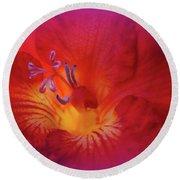 Fade To Freesia - Iridaceae Round Beach Towel