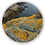 Falkland Islands Round Beach Towel