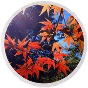 Fall Color 1 Round Beach Towel