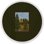 Fall Colors 2 Greeting Card Round Beach Towel