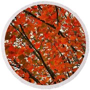 Fall Colors 2014-10 Round Beach Towel