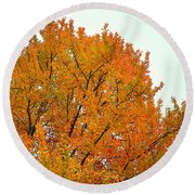 Fall Colors 2014-11 Round Beach Towel