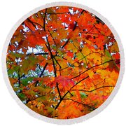 Fall Colors 2014-4 Round Beach Towel